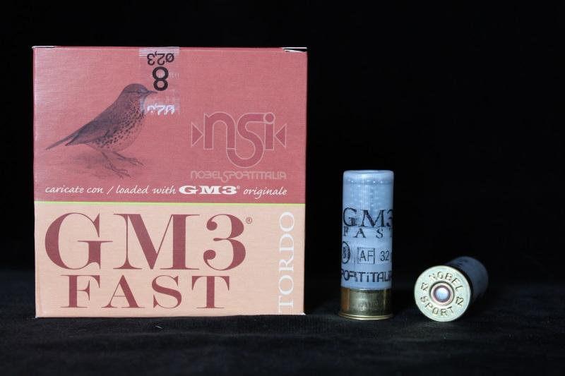 1_nsi-gm3-fast-32gr
